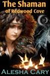 shaman-FNL-new-sml